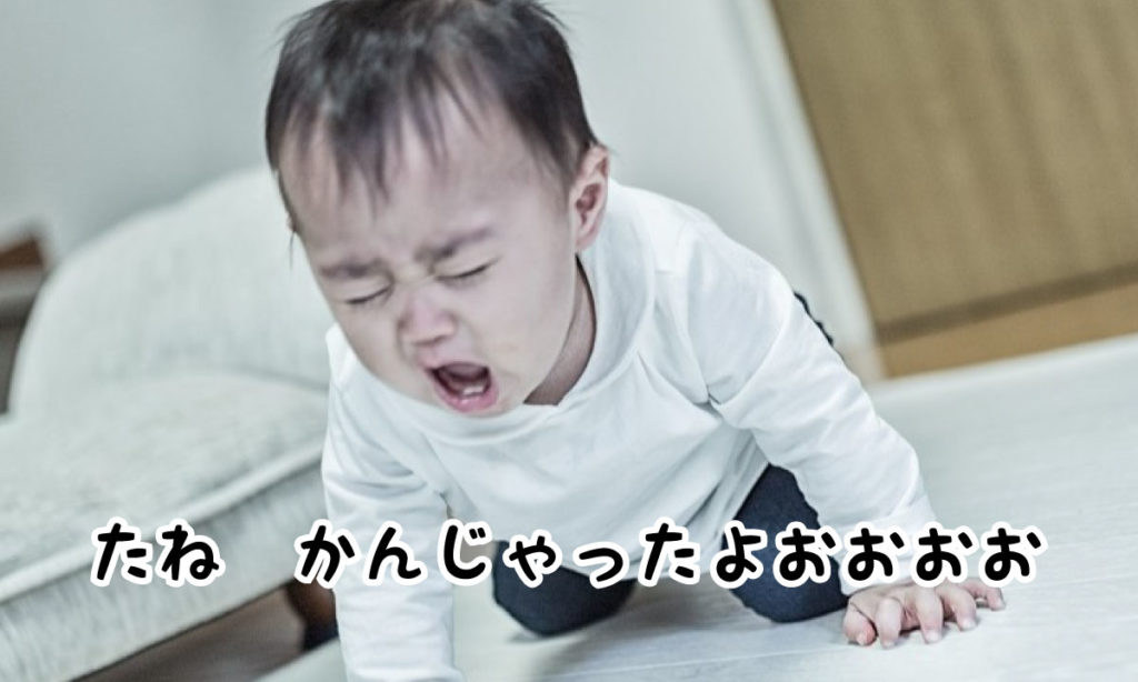 スイカの種を噛んで泣き叫ぶ子供